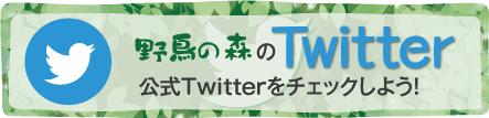 野鳥の森Twitter